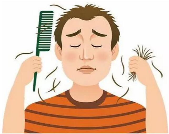 头发种植拯救脱发