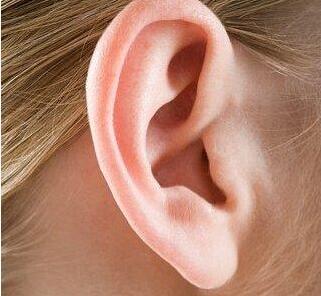 菜花耳矫正手术不适宜人群有4类