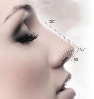 耳軟骨墊鼻尖會被吸收嗎