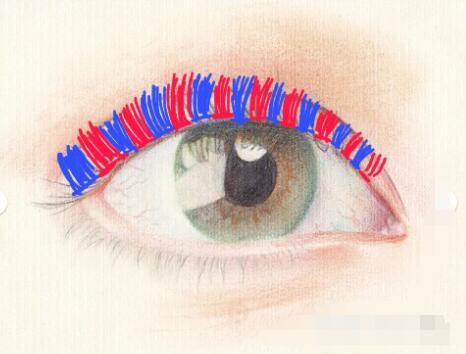 睫毛種植整個過程大曝光