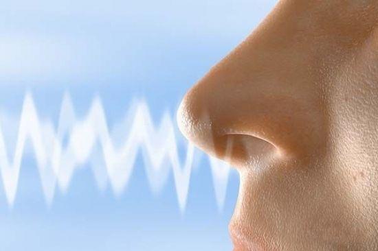 线雕隆鼻术的痊愈过程