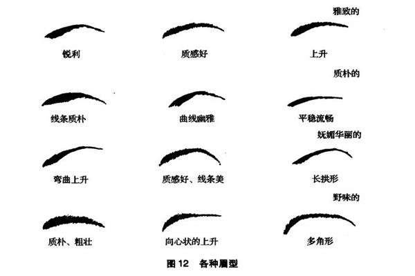 广州眉毛种植能维持多久呢