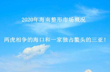 2020年海南整形市场概况:两虎相争的海口和一家独占鳌头的三亚!