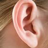 耳部聚星登录网址